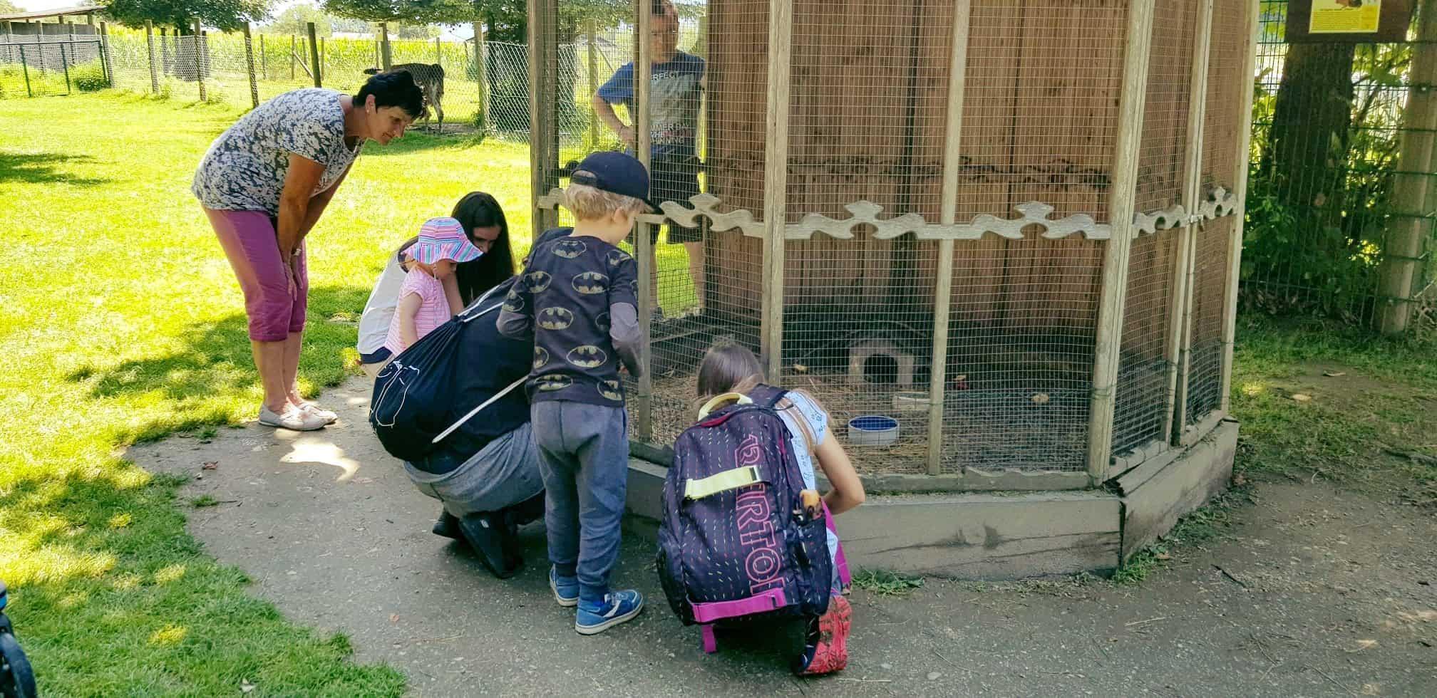 Familie und Kinder im Kleintierzoo bei Ausflug in den Tierpark Rosegg in Kärnten