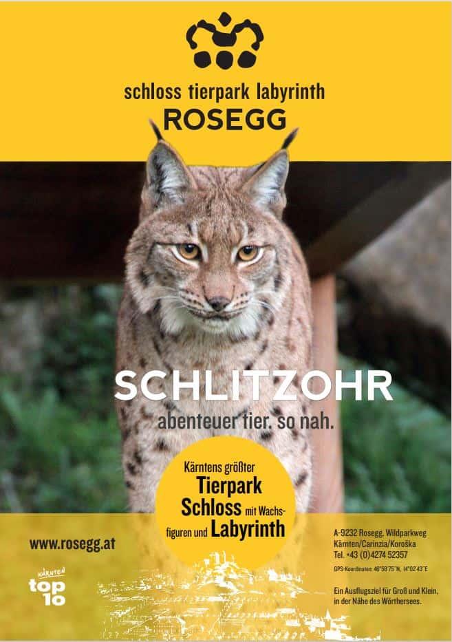 Plakat Schlitzohr Luchs
