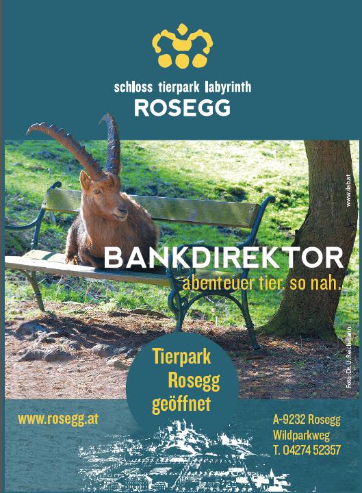 Plakat Bankdirektor Steinbock