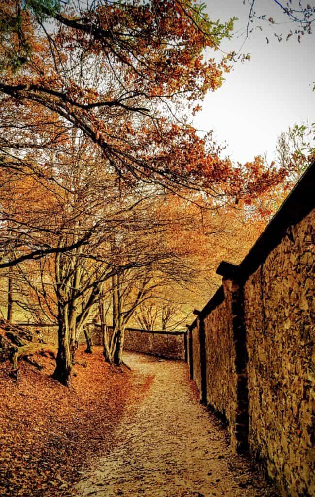 Herbstliche Wanderung entlang der Burgmauern in Rosegg