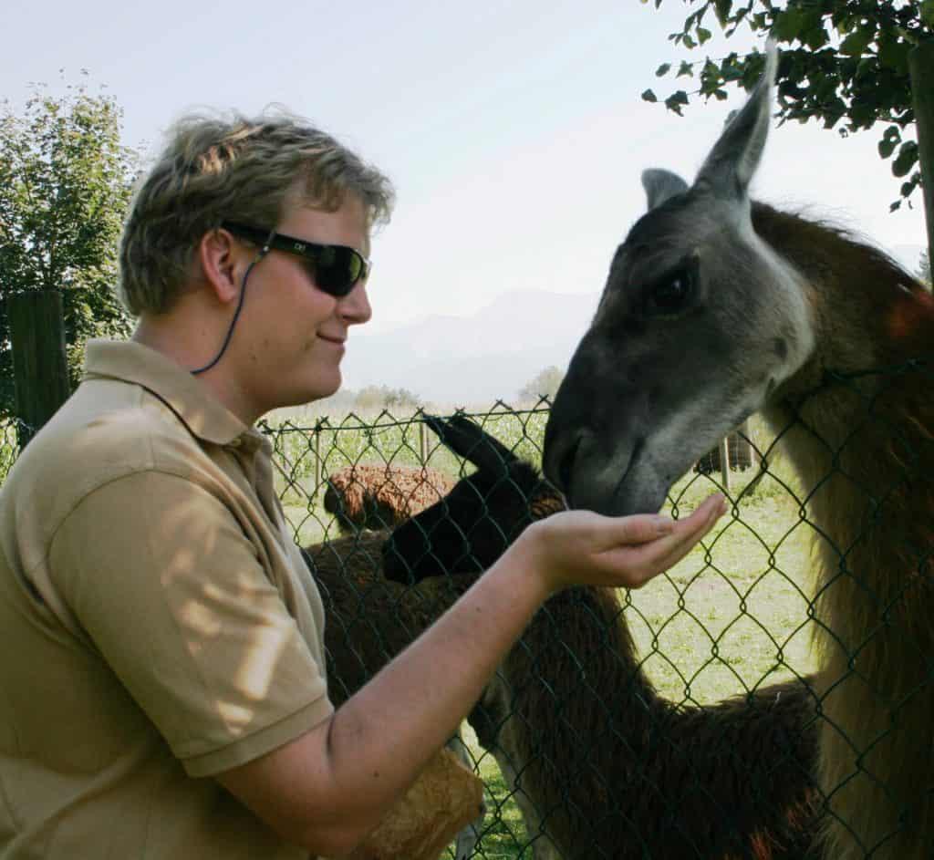 Besucher mit Lama im Streichelzoo