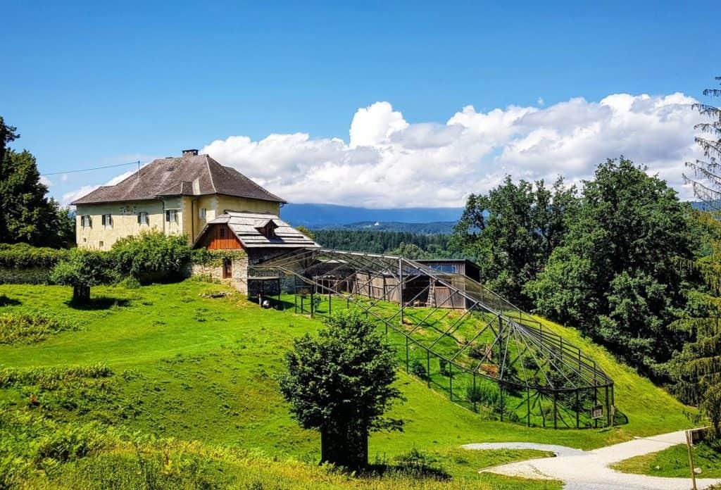 Waldrapp Voliere im Freien - Tierschutzprojekt Rosegg in Österreich