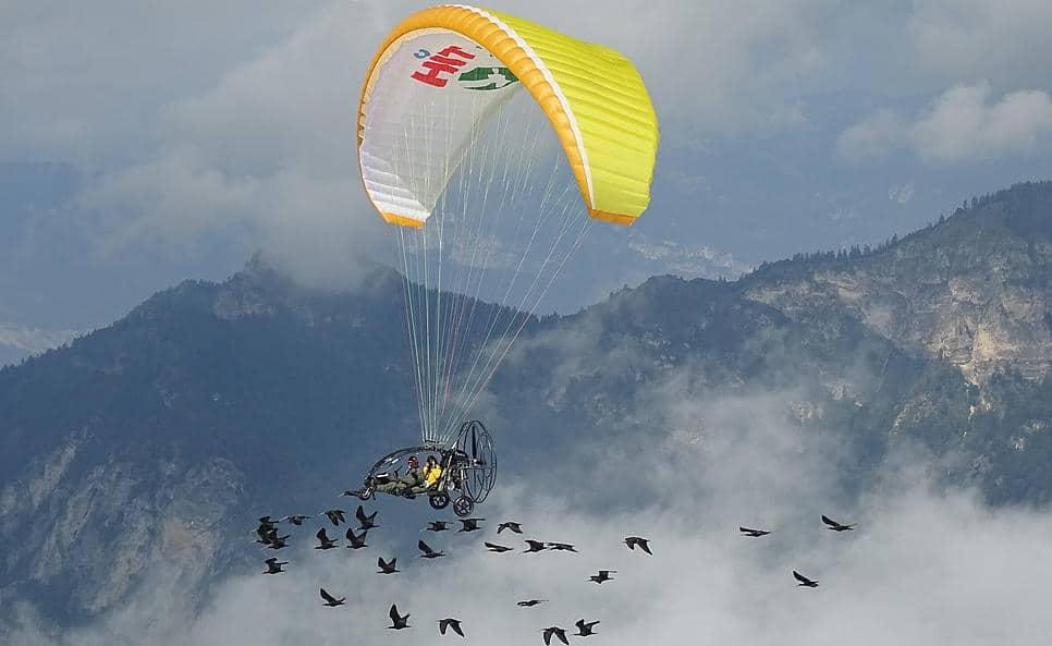 Ibis Projekt - Waldrappteam mit Leichtflugzeug und Waldrappen