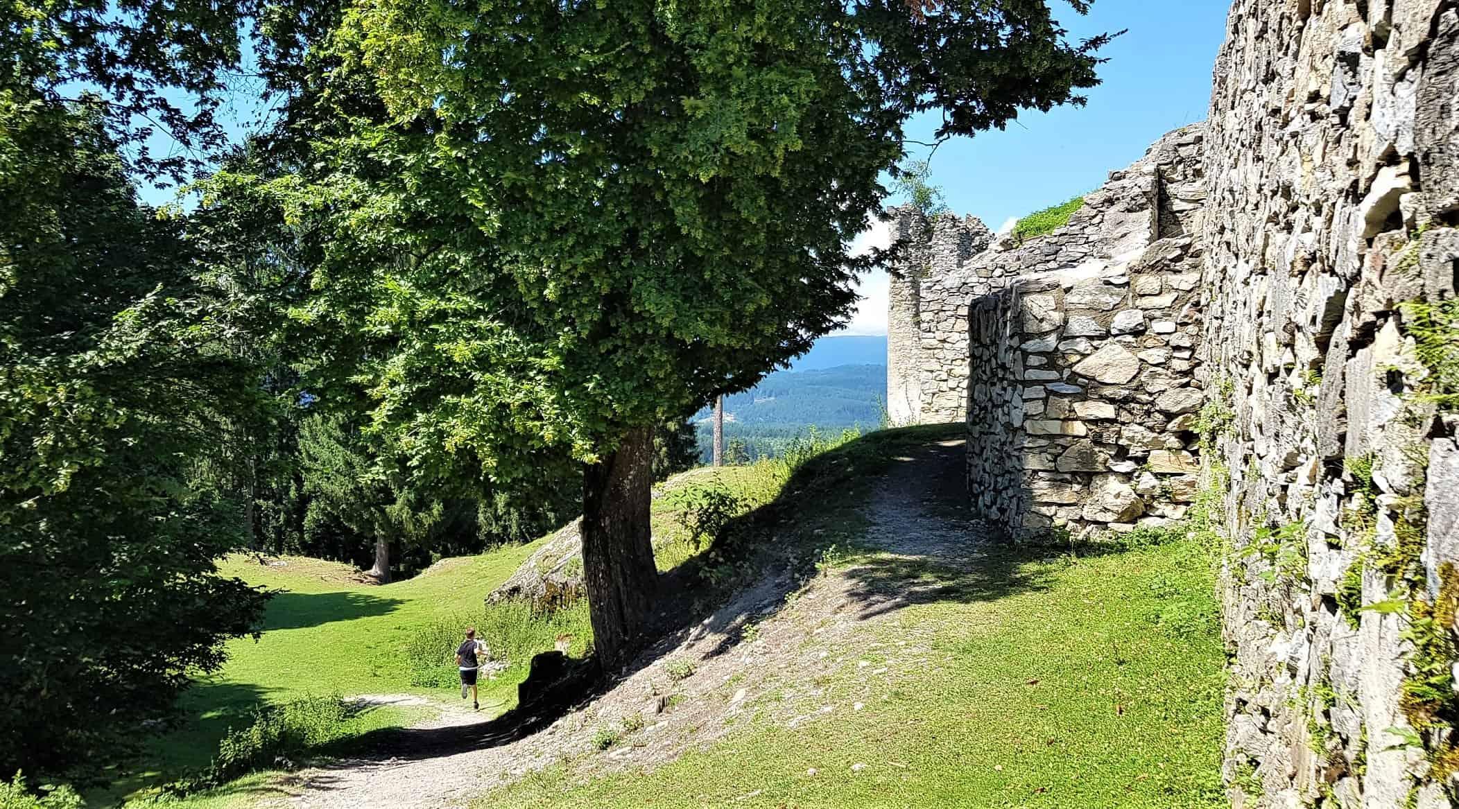 Mauern Ruine Rosegg Tierpark in Kärnten