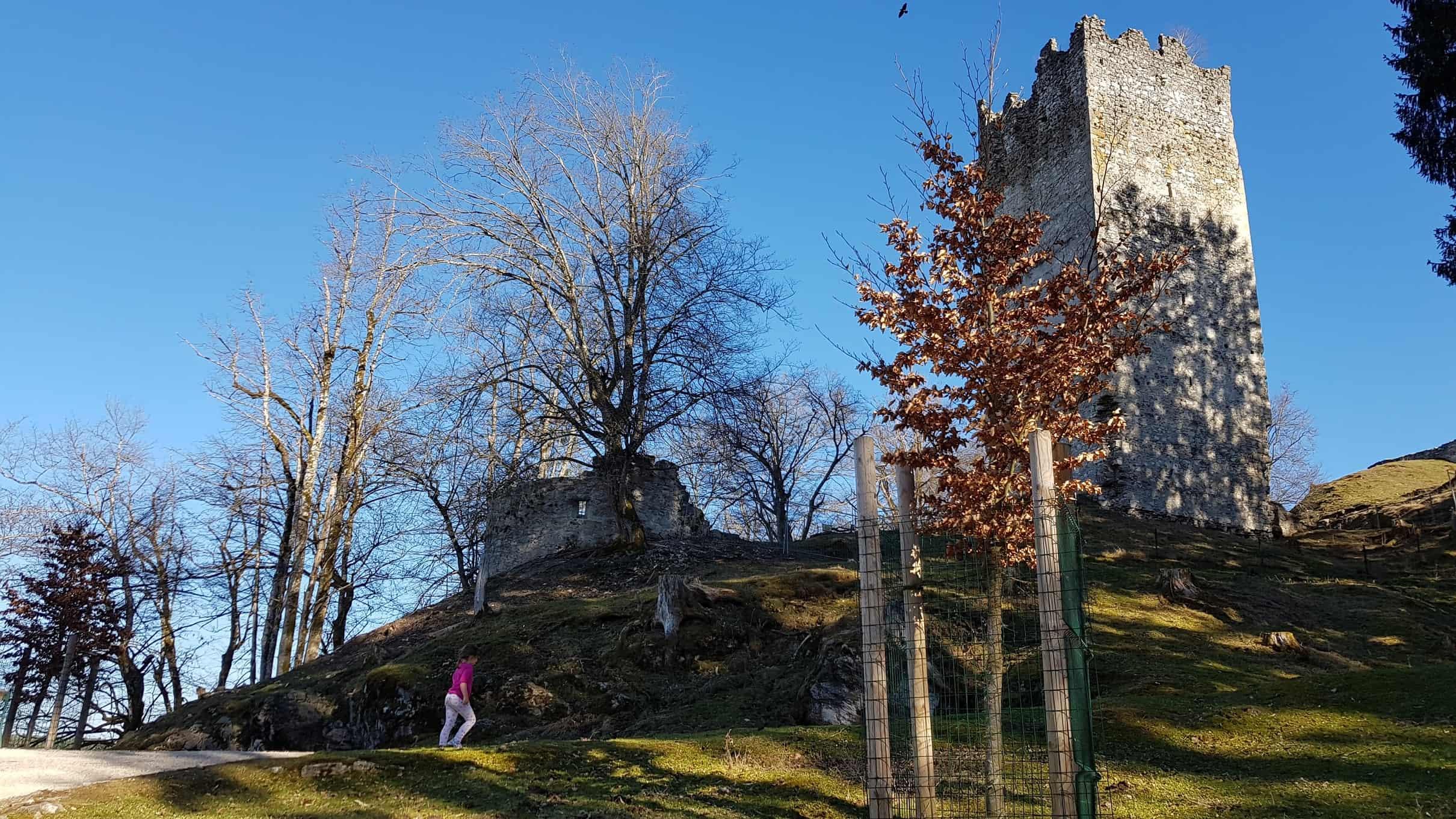 Burghügel rund um Ruine
