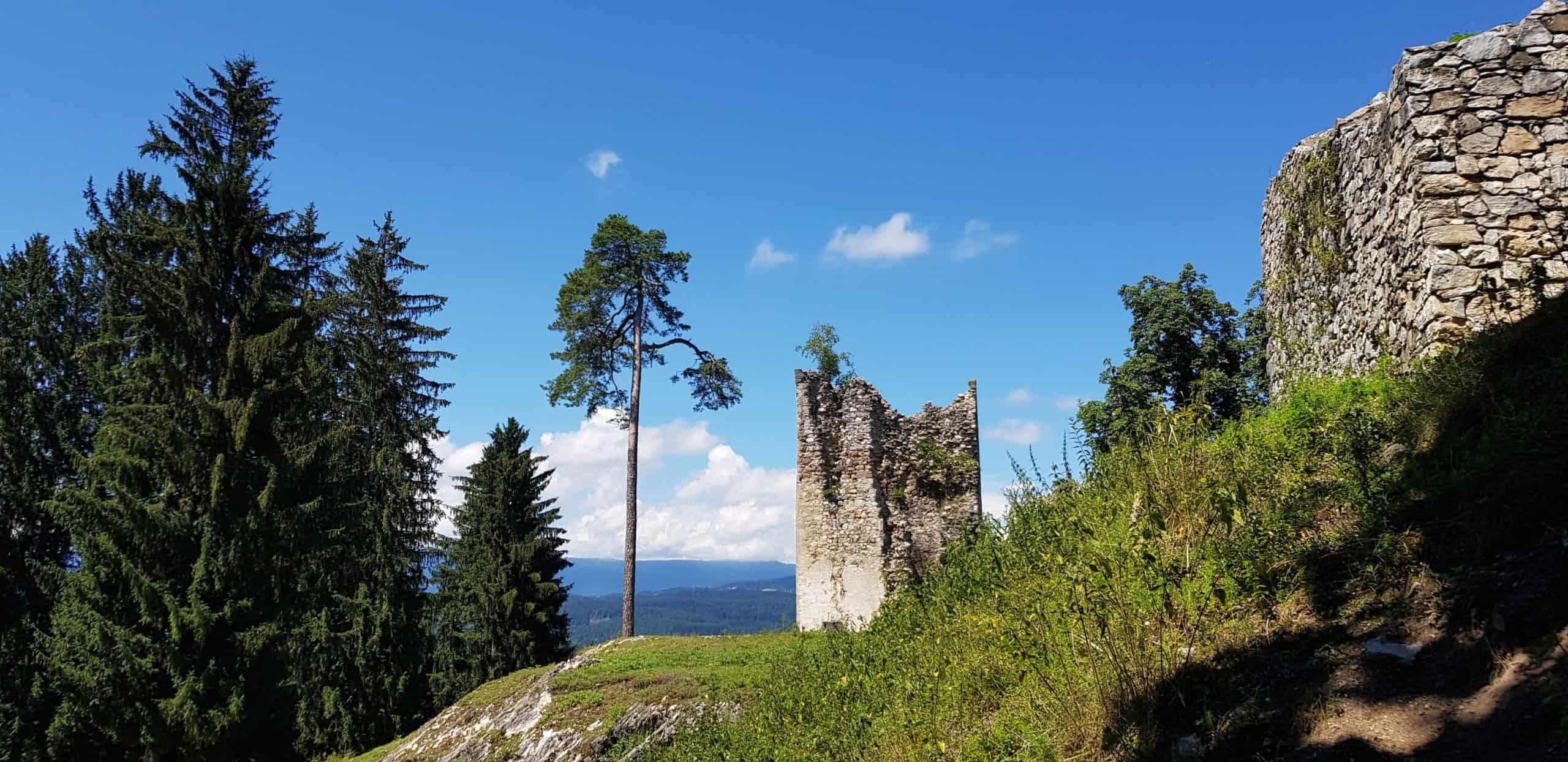 Burgruine in Kärnten
